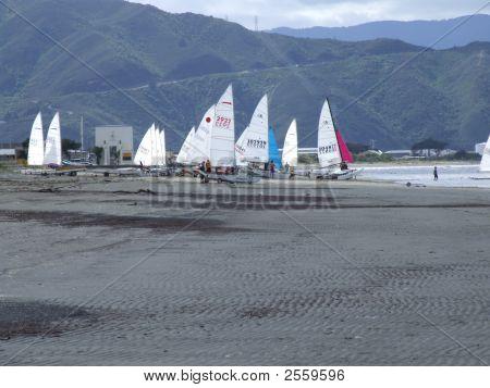 Seashore Sailboats