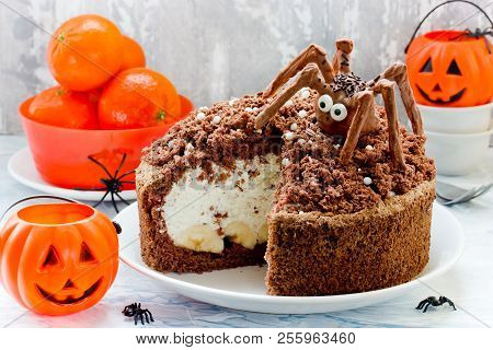 Spider Nest Cake Decorated With Chocolate Spiders, Funny Halloween Themed Food Idea For Kids