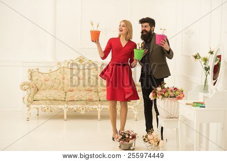 Floral Concept. Happy Woman And Man Hold Flowers In Pots, Floral Decor. Sensual Woman And Bearded Ma