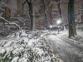 Central Park, New York City After And During Snow Storm
