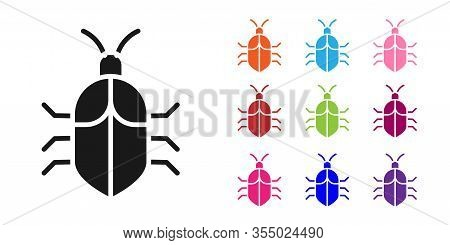 Black System Bug Concept Icon Isolated On White Background. Code Bug Concept. Bug In The System. Bug