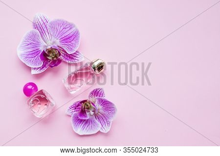Bottle Of Womens Perfume And A Delicate Orchid Flower On A Pink Background.purple Orchid Flower Phal