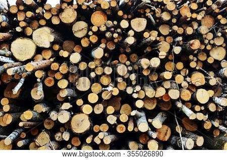 Logs Stacked On Logging And Woodworking Industry. A Stock Pile Of Timber, Chopped Down Trees. Timber