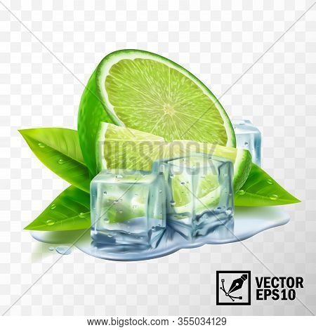 3d Realistic Vector Set Of Elements Lime With Mint Or Tea Leaves And Ice Cubes, Half Lime, Sliced Li
