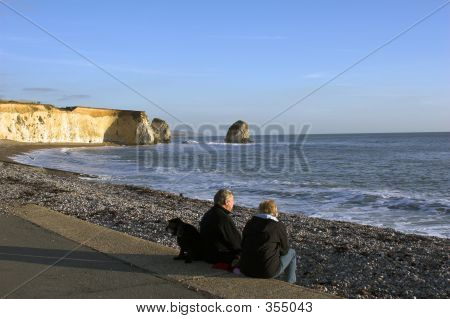 Couple With Dog Looking Out To Sea