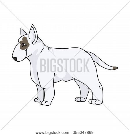 Cute Cartoon Bull Terrier Dog Breed Vector Clipart. Pedigree Kennel Show Dog For Dog Lovers. Purebre