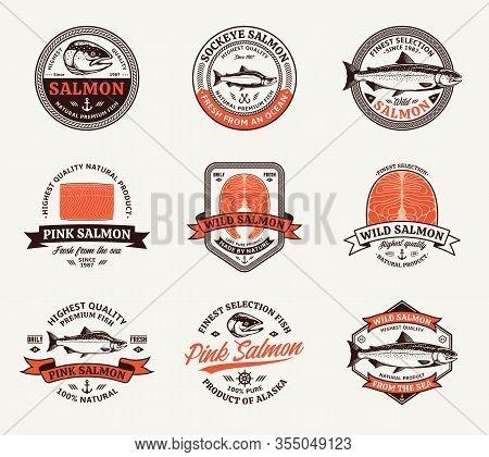 Vector Salmon Logo And Design Elements