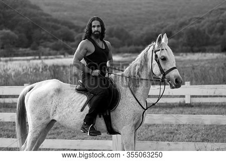 Beautiful Horse With Man Rider Trotting On Autumnal Field. Equestrian And Animal Love Concept. Rider