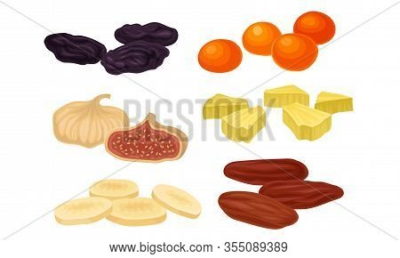 Dried Fruits With Figs And Raisin Isolated On White Background Vector Set