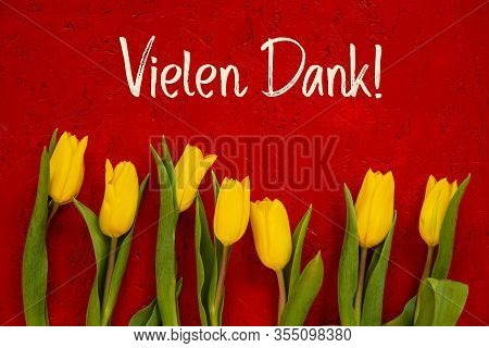 Yellow Tulip Flowers, Red Background, Text Vielen Dank Means Thank You