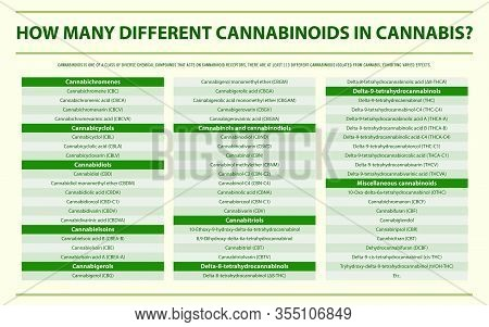 How Many Different Cannabinoids In Cannabis Horizontal Infographic
