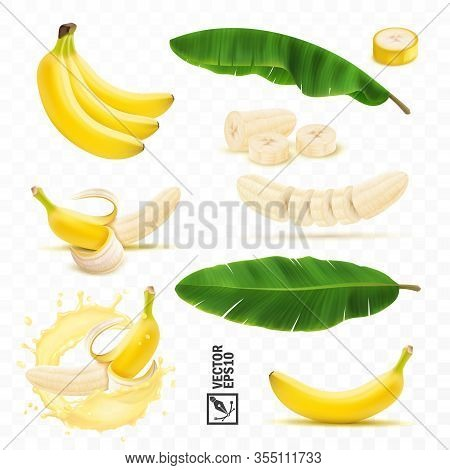 3d Realistic Vector Set Of Banana Fruits, Bunch Of Bananas, Peel, Peeled Banana, Slices And Halves,