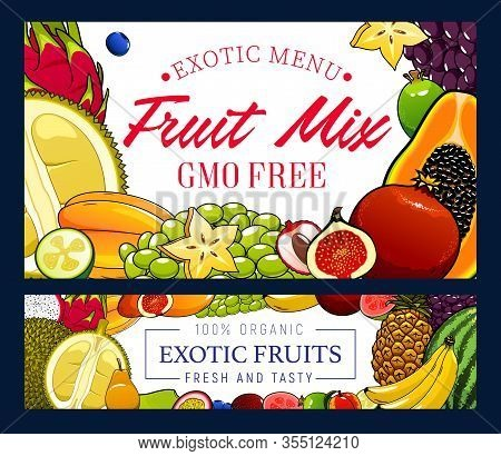 Tropical Fruits And Berries, Gmo Free Vector Food. Papaya, Banana And Pineapple, Fig And Durian, Gre