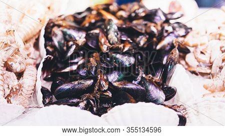 Mussels On Supermarket, Sea Food Market, Fresh Seafood, Shellfish, Aphrodisiac Mollusca