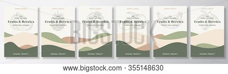 Aroma Candle Vector Labels Template Bundle. Fruits And Berries Scents Set Advert Design. Sketch Back