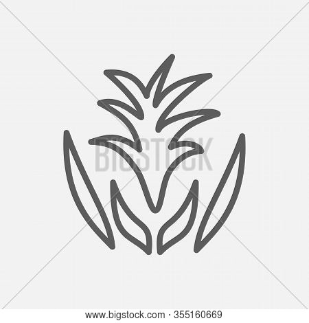 Guzmania Icon Line Symbol. Isolated Illustration Of Icon Sign Concept For Your Web Site Mobile App L