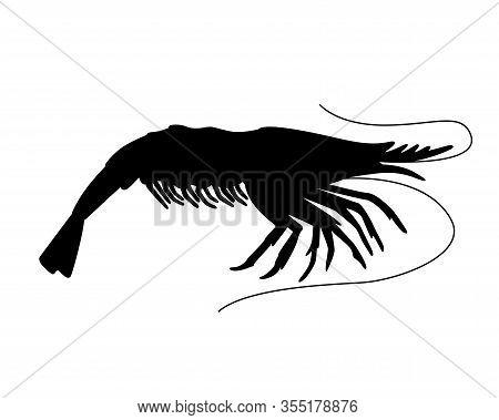 Shrimp - Small Marine Crustacean Living Underwater - Vector Silhouette For Logo Or Pictogram. Animal