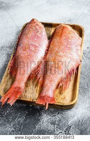 Raw Red Sea Bass. Gray Background. Top View