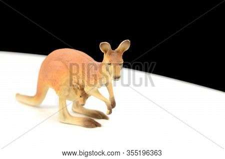 A Closeup Image Of A Kangaroo And Joey Hopping Along The White Path.