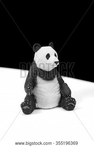 A Black And White Image Of A Cute Panda Bear.