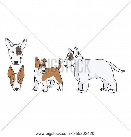 Cute Cartoon Bull Terrier Dog And Puppy Set Breed Vector Clipart. Pedigree Kennel Show Dog For Dog L