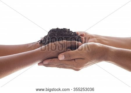 Young Girlhands Hold Protect Smallsprouttree Plant In Blacksoilon Sunlight White Background. Ag