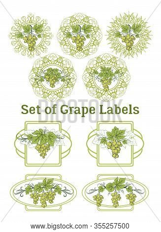 Set Of Labels, Stickers With Green Grape Bunches, Berries And Leaves, On Ellipse And Square Frames.