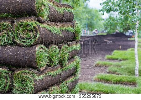 Stack Of Turf Grass For Lawn. Carpet Of Turf, Roll Of Sod, Turf Grass Roll. Installation Of Landscap