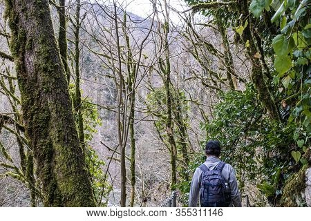 In The Winter Senior Man With A Backpack And In A Baseball Cap Is Walking Along A Hiking Trail Among