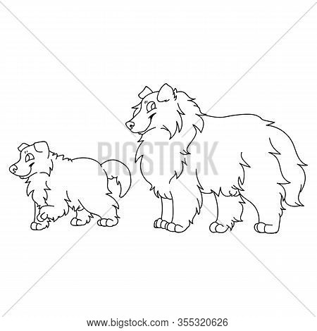 Cute Cartoon Rough Collie Dog And Puppy Monochrome Vector Clipart. Pedigree Kennel Sheepdog Lineart.