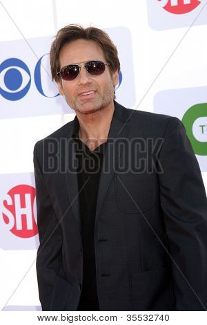 LOS ANGELES - JUL 29:  David Duchovny arrives at the CBS, CW, and Showtime 2012 Summer TCA party at Beverly Hilton Hotel Adjacent Parking Lot on July 29, 2012 in Beverly Hills, CA