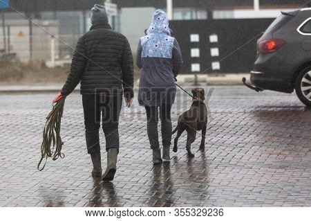 Picture Of A Couple With Dog Crossing A Street At Rain