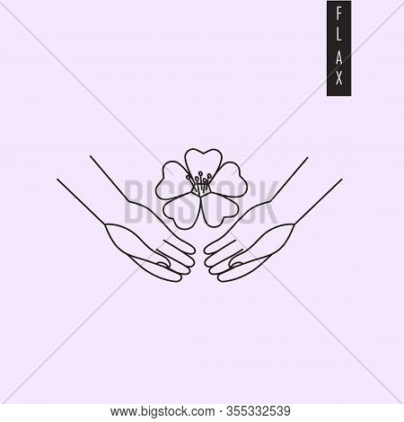 Vector Illustration Of Hands Holding Flax Plant Flower In Outiline Style. Linseed Drawing For Medici