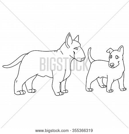 Cute Cartoon Bull Terrier Dog And Puppy Breed Monochrome Lineart Vector Clipart. Pedigree Kennel Sho