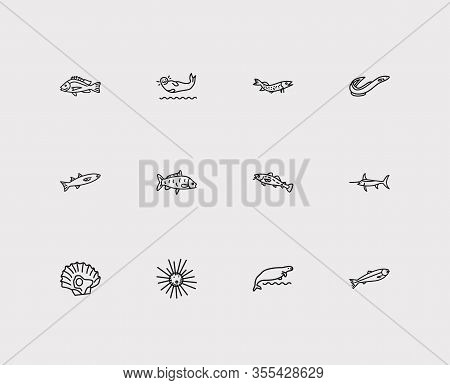 Seafood Icons Set. Salmon And Seafood Icons With Cod Fish, Harbor Seal And Carp Fish. Set Of Catfish