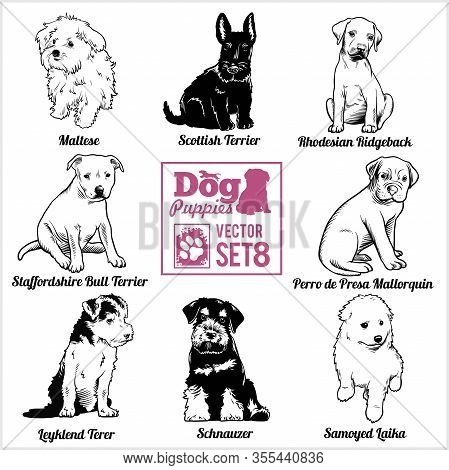 Dog Puppies - Vector Set. Funny Dogs Puppy Pet Characters Different Breads Doggy.