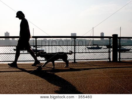 poster of dog walker in the riverside park, nyc