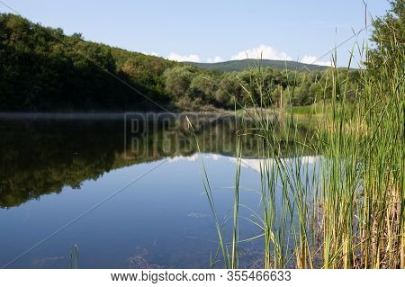 Summer Landscape With Reed And Still Lake In Crimean Mountains