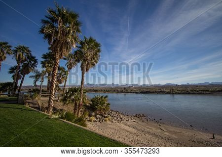 Laughlin Nevada Waterfront. Beach With A Grove Of Palm Trees On The Colorado River In The Waterfront