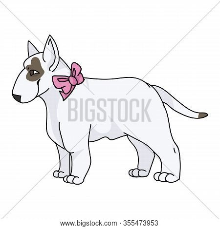 Cute Cartoon Bull Terrier Dog Breed With Pink Bow Vector Clipart. Pedigree Kennel Show Dog Lovers. P