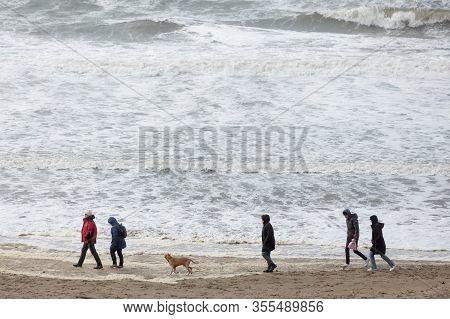 Beach At The Northern Sea, Bloemendaal Aan Zee, Netherlands