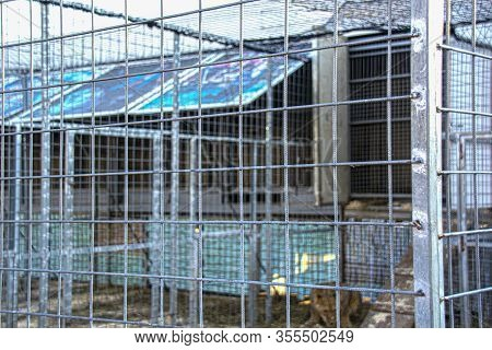 Empty Cages In The Zoo. Concept: Protection Of Animals, Keeping In Captivity, Death Of Animals In Ca