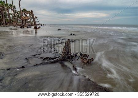 Hunting Island South Carolina And Beach Scenes