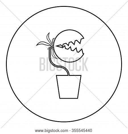 Carnivorous Plant Flytrap Monster With Teeths In Pot Icon In Circle Round Outline Black Color Vector