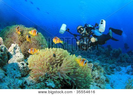 Scuba Diving Underwater Photographer with Tropical Fish in the Ocean