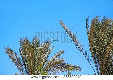 Plane Flying High In Sky. View To Plane Between Branch Of Palm Trees. Airplane Seen In Blue Sky. Aer