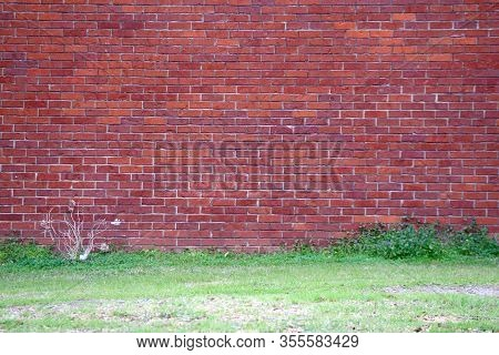Bright Old Red Brick Garden Path Wall Grass
