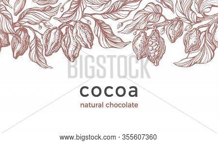 Cocoa Harvest. Vector Vintage Background. Art Hand Drawn Botanical Tree, Bean, Tropical Fruit, Leaf.