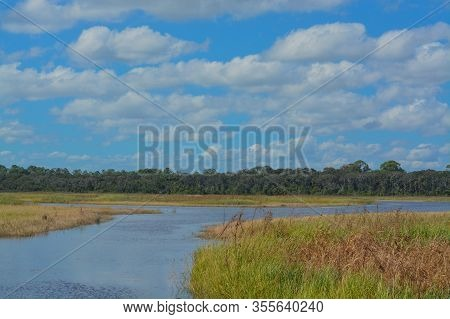Guana River Wildlife Refuge In St Johns County Florida Usa