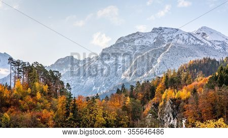 Snow-capped Mountain With Colorful Of Tree In Forest Of Interlaken, Switzerland. Early Winter Of Nov